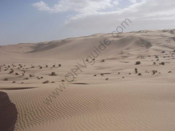 glamis_sand_dunes-097