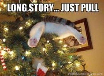 kerst humor