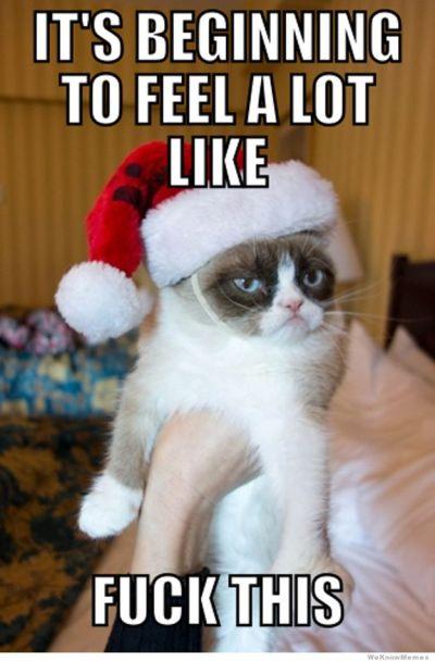 kerst humor grumpy cat