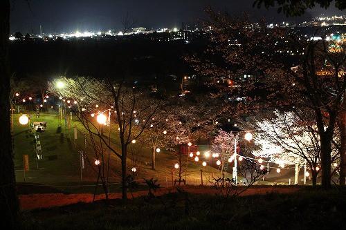 とても素敵な公園です。