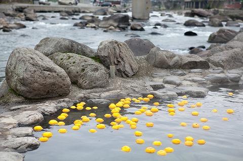 今週末から柚子風呂です。tags[大分県]