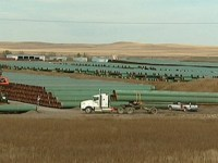 Pipe destined for TransCanada's Keystone XL pipeline is stockpiled near Gascoyne, N.D. (CBC)