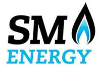 SM Energy Appoints Director