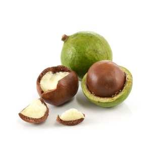 Risultati immagini per macadamia oil