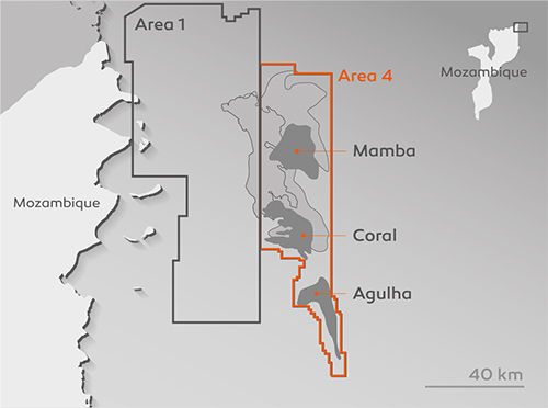 Total declares Force Majeure on Mozambique LNG project