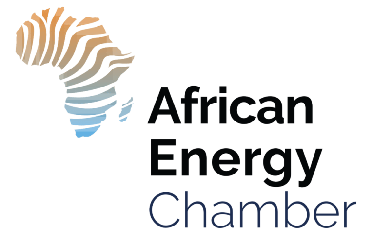 US-Africa Energy Committee Makes Capital Markets Access its Priority
