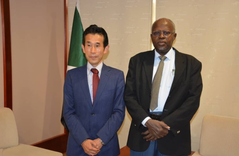 SUDAN: JICA Interested in Providing Aid & Training in the Field of Solar Energy