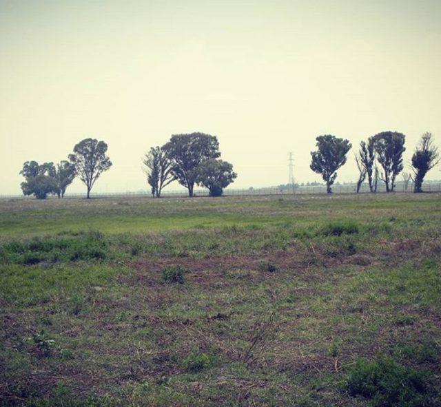 Foto: Ofrecen en internet venta de terreno donde será el Aeropuerto Internacional de Santa Lucía, abril 23 de 2019 (Instagram: esteoestein)