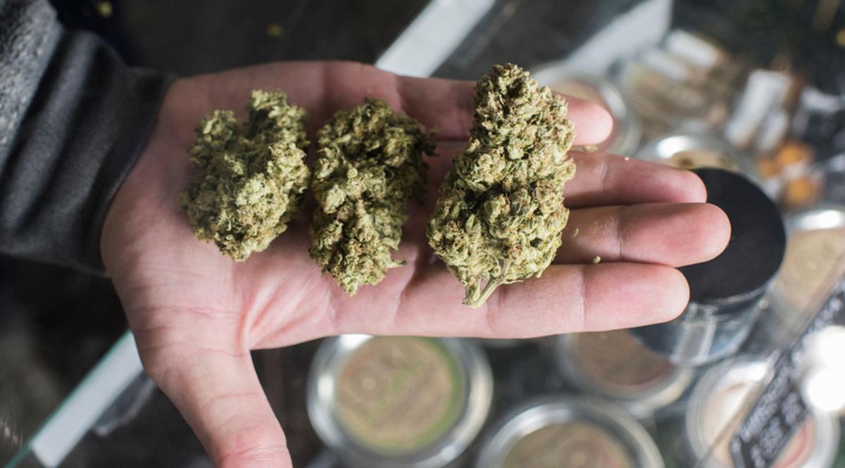 El mercado internacional del cannabis