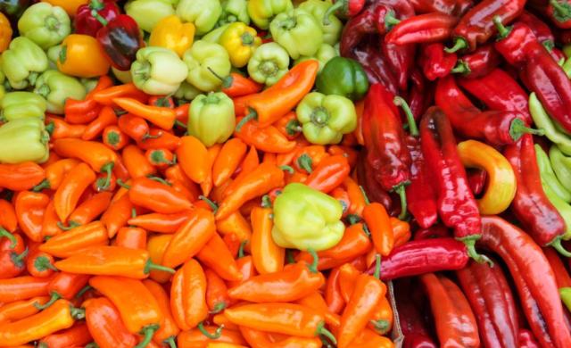 Variedad de chiles mexicanos