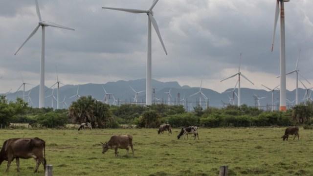 energía eólica, energéticos