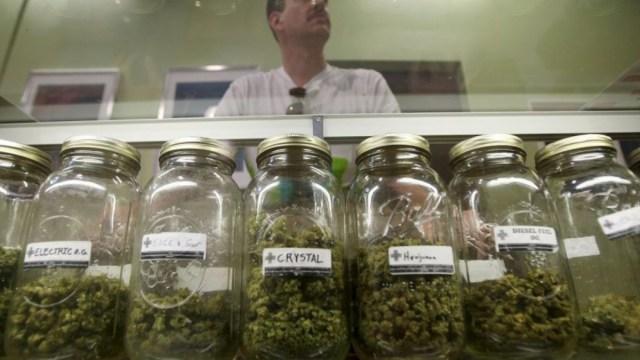 ganancia de una persona que trabaja en la industria de la marihuana legal
