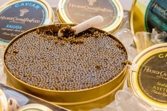 Caviar de beluga albina