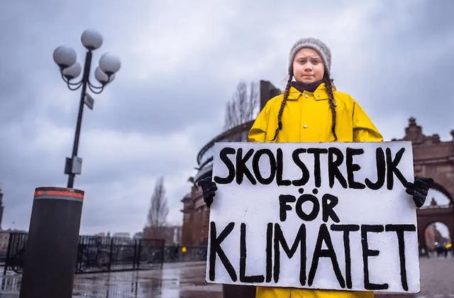 30 de enero 2020, greta thunberg, cambio, climático, protesta, viernes, futuro