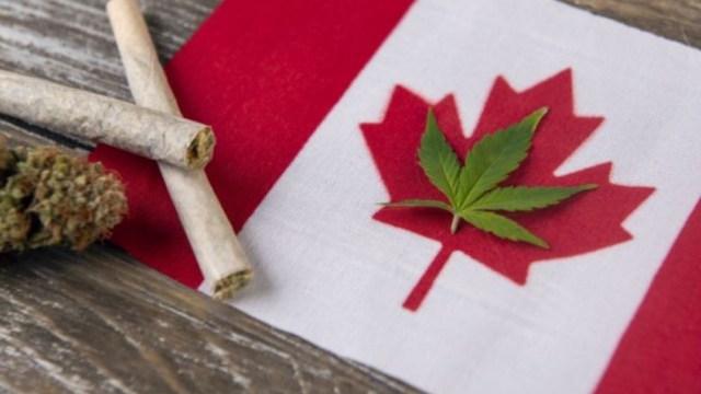5 de enero de 2020, dinero, marihuana, canada, marihuana legal en Canadá (Imagen: Especial)