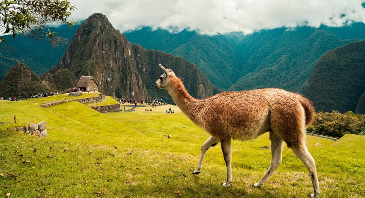 Viajes a Perú, Viajes, Promociones, Perú, Turismo