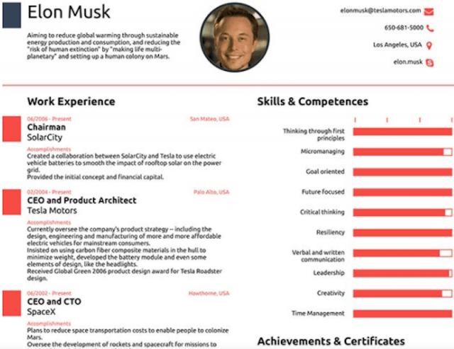 CV Elonk Musk (Imagen: Novorésumé)
