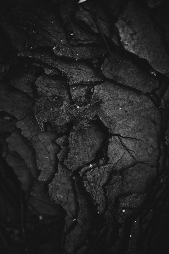 Venta de carbón para CFE (Imagen: Unsplash)