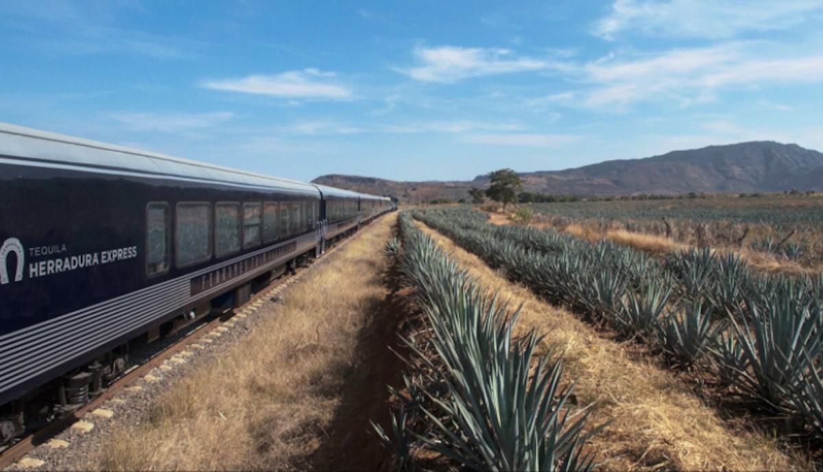 Tequila Herradura Express (Imagen: Twitter @EgresadosyEXUDG)