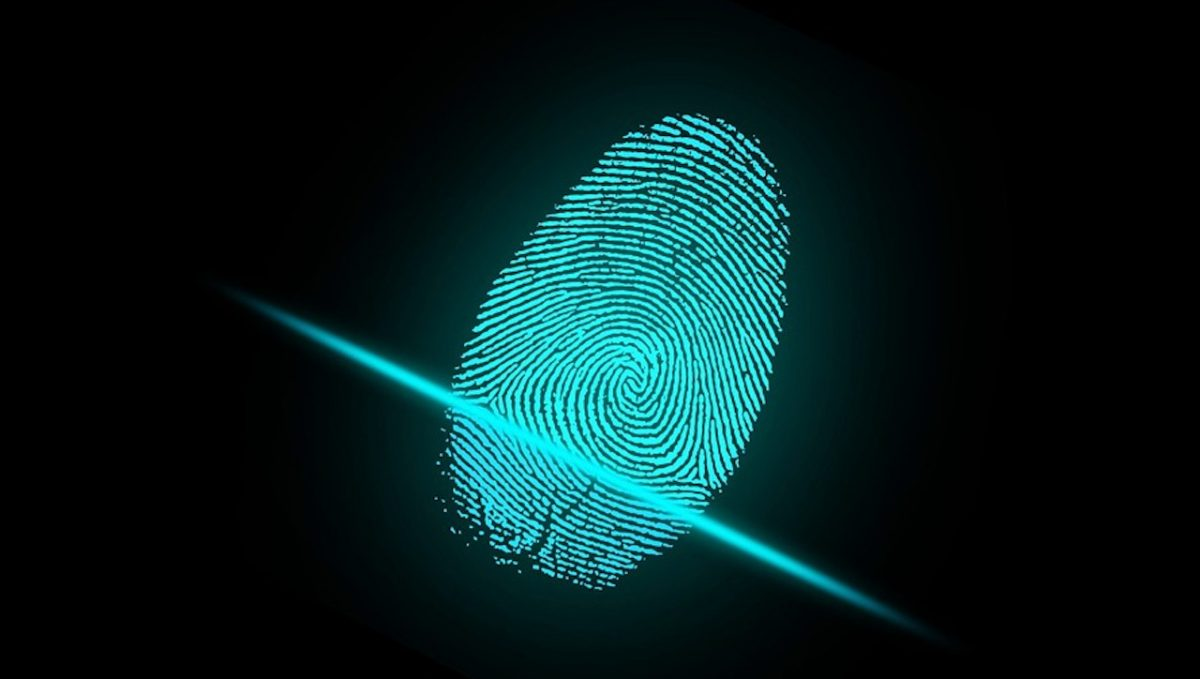 Robo de identidad (Imagen: pixabay)