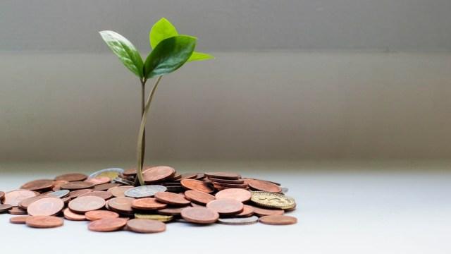 Qué son las inversiones verdes y sostenibles