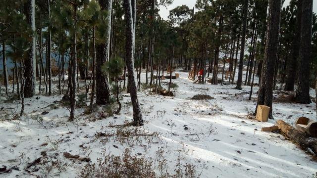 Mega apagón masivo en el norte de México luego de nevada