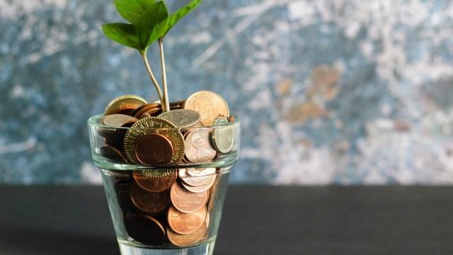 Si tienes estas tres monedas estadounidenses puedes ganar mucho dinero