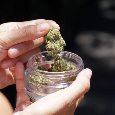 ¿Te gustaría invertir en cannabis? Asiste este evento