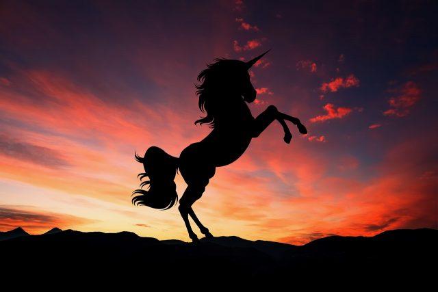¿Qué necesita mi empresa para convertirse en Unicornio?