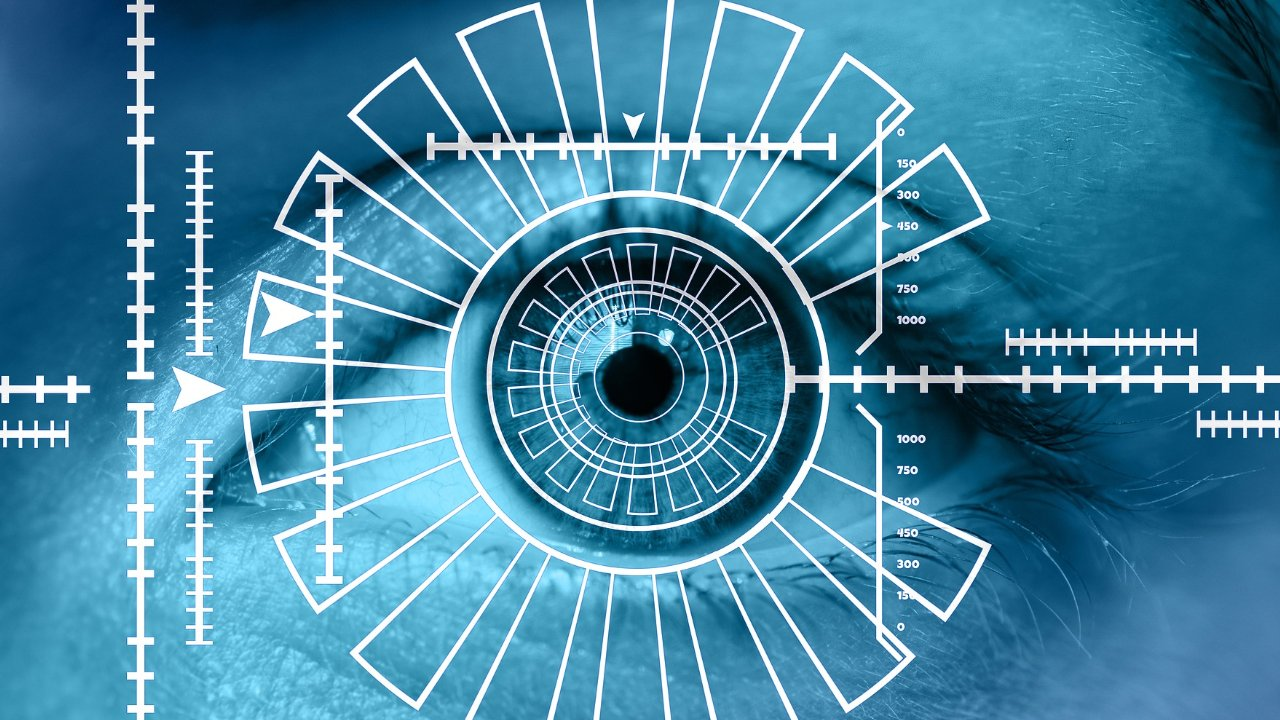 Conoce los detalles de un expediente biométrico