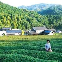 シンガポールの英文日本食情報誌「Oishii」に紹介されました
