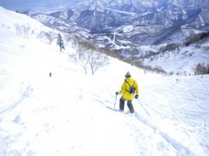 新雪40センチのバックヤードをラッセルし上部へ上部へ