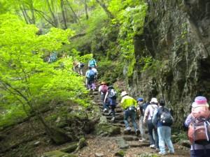 山ガールでラッシュ状態の登山道