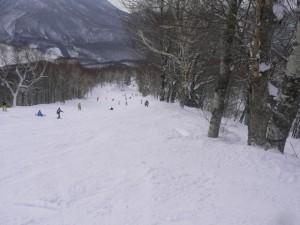 トライアル滑り出しの三田原林間コース