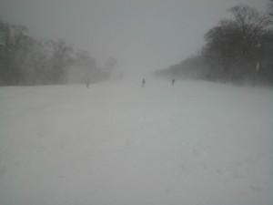 吹雪の西山ぶなの木コース