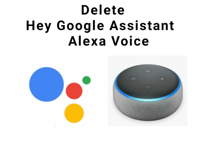 How to remove Hey Google Assistant