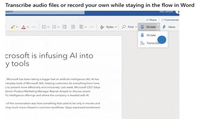 Microsoft Audio Transcript