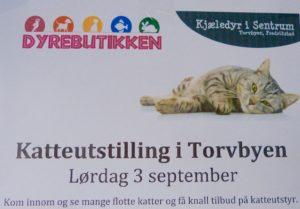 Torvbyen 2016