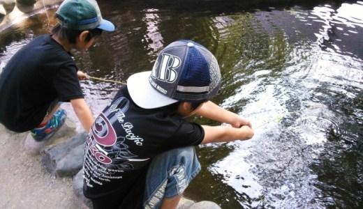 子どもとザリガニ釣りに行くときに失敗しない5つのコツ〜季節・場所・時間・準備・釣り方〜