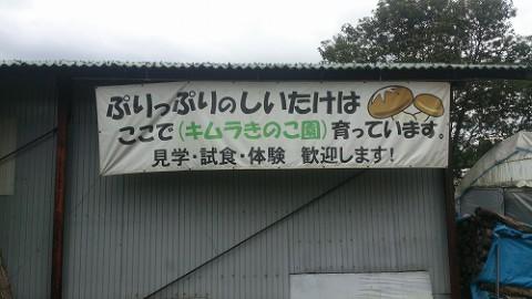 キムラきのこ園