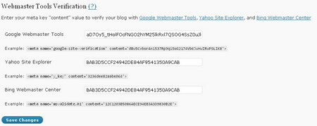 Webmaster Tools Verification
