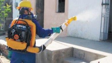 Foto de Chuvas: Cuidados contra mosquito devem ser redobrados