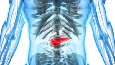 Photo of Alerta! Câncer de pâncreas: os sintomas que podem passar despercebidos