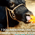 7 Documentaries That Will Completely Change Your View on Animal Agriculture