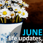 June Monthly Wrap-Up: Life Updates, Favorites & Blog Stats