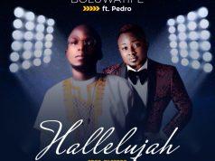 Boluwatife - Hallelujah ft. Pedro