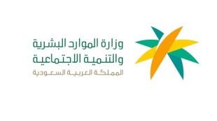 9800 وظيفة تنتظر السعوديين.. بدء توطين مهن المحاسبة – أخبار السعودية