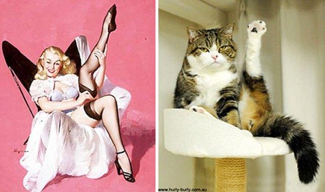 gato como chica pin-up sexy
