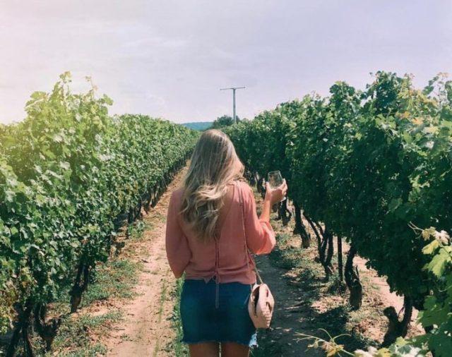 Concurso de compañía Rosé all day, chica rubia de espaldas caminando en un viñedo con una copa de vino en la mano