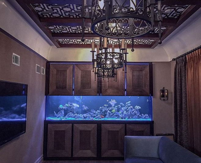 Reef Aquarium Private Residence Brooklyn NY